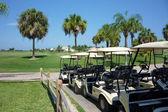Golfové kočárky na golfovém hřišti