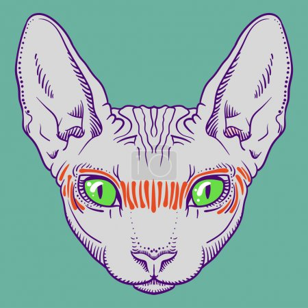 Hairless sphinx cat face graphics, outline