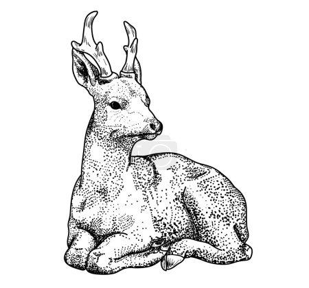 dessin contour cerfs points