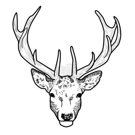 tête de cerf dessin animé graphique avec rokami