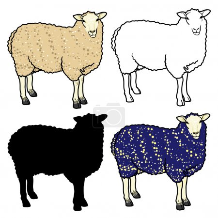 Set of four sheep: white, blue, sheep silhouette and outline sheep.