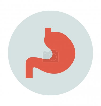 Stomach Colored Vector Icon