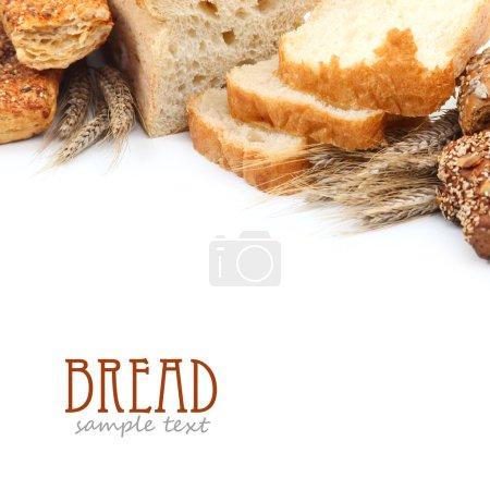 Crusty fresh bread