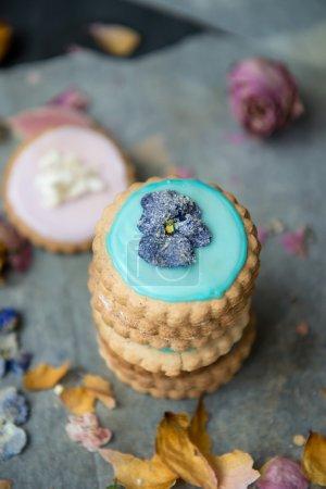 Photo pour Des Biscuits recouverts de glaçage de couleur Pastel et des fleurs printanières sur fond foncé - image libre de droit