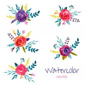 Watercolor flower`s background