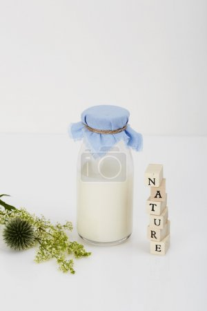 Bottle of milk, plant and blocks