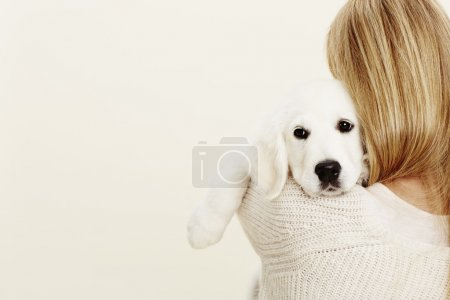 Puppy embraced by blonde owner