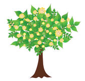 Color vector illustration of a decorative tree with flowers