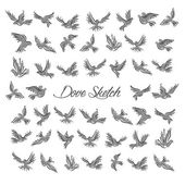Pigeons and doves birds symbols