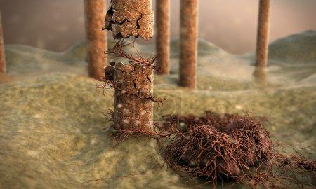 Photo pour Peau au microscope, image de la peau avec les cheveux, Caméra survole la surface de la peau, Illustration 3D des cheveux, champignon tuant les cheveux - image libre de droit