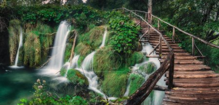Photo for Waterfall in the lush green forest with long wooden stairway. - Royalty Free Image