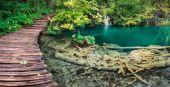 Wood bridge green lake pano