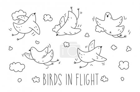 Photo for Set of cute birds in flight. Pencil sketch for coloring. Graphics illustration for postcards, posters, designs, prints - Royalty Free Image