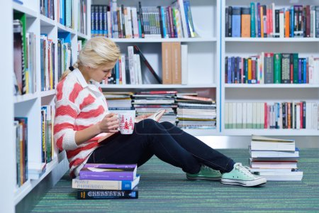 Beautiful  student studying