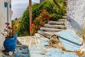 Traditional Cycladic street