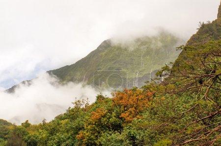 Iao Valley, Maui island, Hawaii, USA