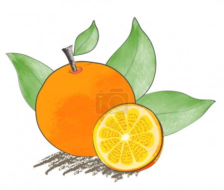Orange water color hand drawn vector design