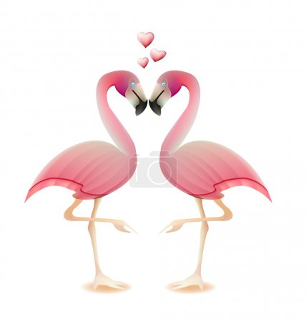 Flamingos heart love valentine concept