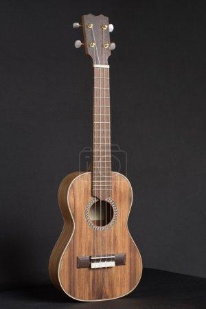 Wooden Ukulele musical instrument