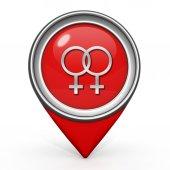 Lesbické ikonu na bílém pozadí