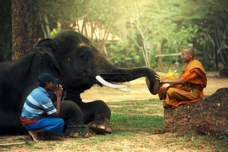 The Monk and man with young elephant