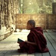 Novice monk learning reading book in the temple ma...