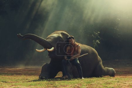 Photo for Standard friendship the man with elephant. - Royalty Free Image