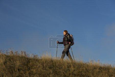 Female hiker ascents the grassy hill using trekkin...