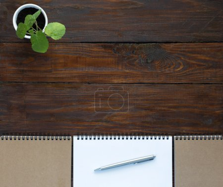 Photo pour Vue du dessus de l'arrière-plan en bois naturel Ligne de blocs-notes ouverts et pliés dans des tons beiges sereins Plante verte dans le coin droit et le stylo de classe exécutive - image libre de droit