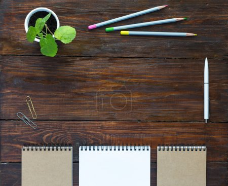 Dark Brown Wooden Desk with Sketchbooks Pencils Plant