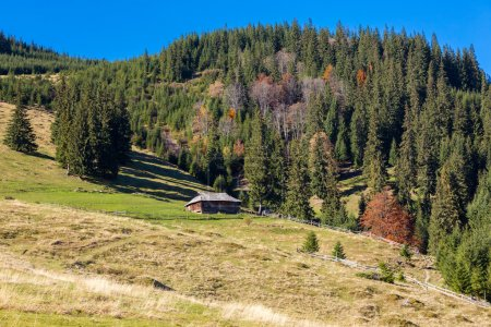 Mountains with Autumnal Forest and Shepherds Wooden Hut