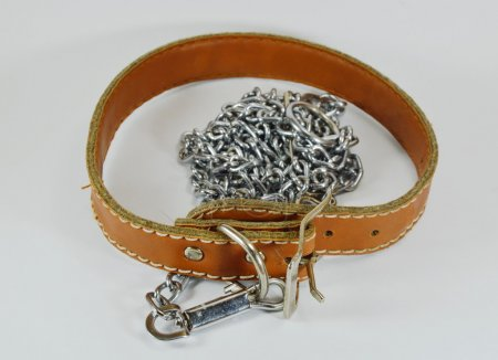 dog leather collar and lead chain