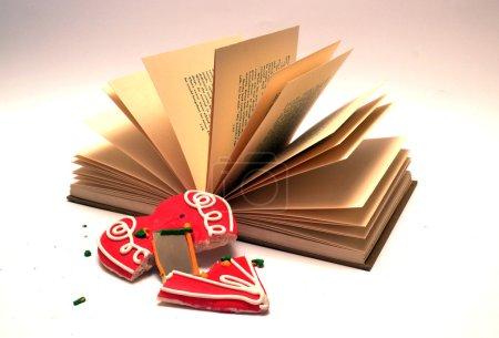 Photo pour Open book with broken leceder heart in front - image libre de droit