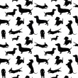 Seamless pattern with dogs...