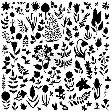 Illustration for Plants and flowers set - Royalty Free Image