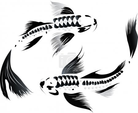 Illustration for Artistic vector illustration of koi carps couple in water - Royalty Free Image