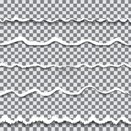 Vector transparent torn paper