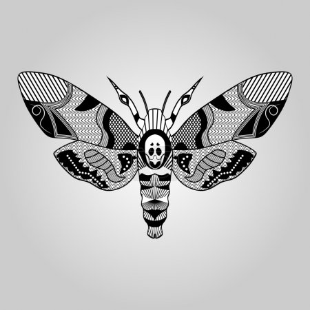 Moth Acherontia atropos, black and white drawing, hatched and textured parts on wings, tattoo template