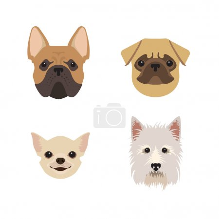 Breeds of dogs set