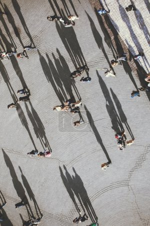 People with lolg shadows, top view.