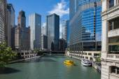 Chicago River View