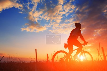 Photo for Mountain bicycle rider on the hill with sunrise background - Royalty Free Image