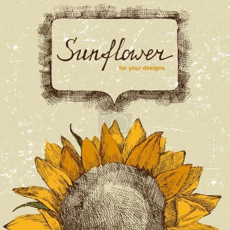 Hand drawn background with sunflower