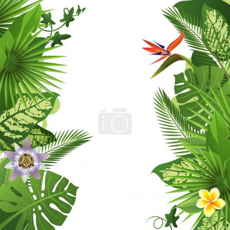 Illustration for Tropical background - Royalty Free Image