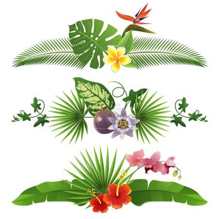Photo pour 3 bordures tropicales décoratives à partir de feuilles et fleurs - image libre de droit