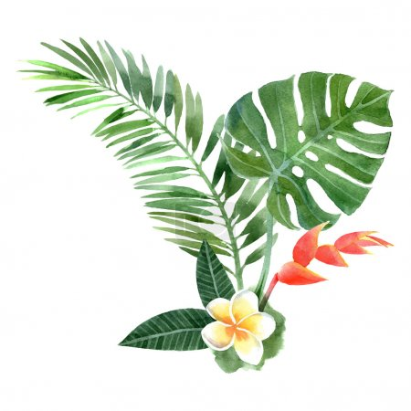 Illustration for Hand drawn watercolor tropical plants - Royalty Free Image