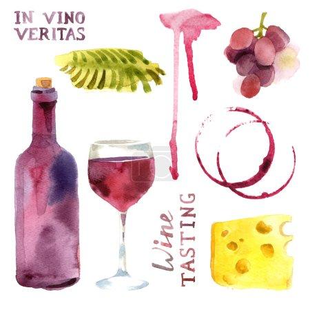 Illustration pour Éléments de conception de vin aquarelle lumineux - image libre de droit
