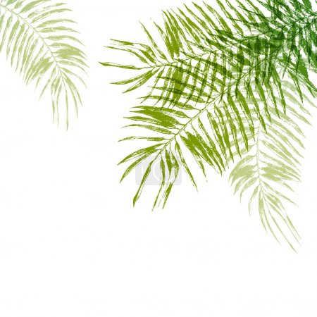 Illustration for Hand drawn palm tree leaves background - Royalty Free Image