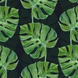 Watercolor monstera leaf seamless pattern on dark ...