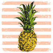 hand drawn pineapple on striped background
